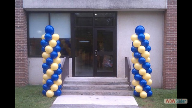 Balloon Columns at Entrance