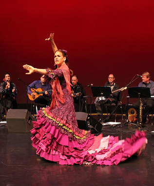 Flamenco Entertainers